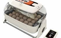 Обзор автоматического инкубатора для яиц r com king suro20