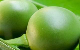 Как высушить зеленый горошек в домашних условиях