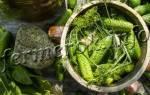 Пошаговый рецепт малосольных огурцов в домашних условиях