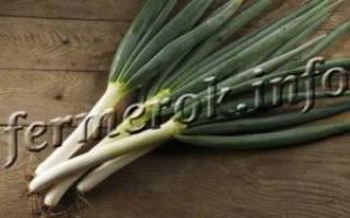 Описание некоторых сортов лука батуна