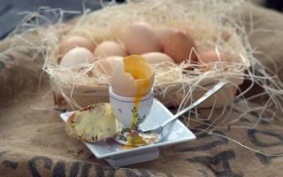 Сырые яйца польза или вред