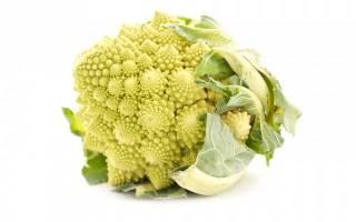 Правила ухода и выращивания капусты романеско