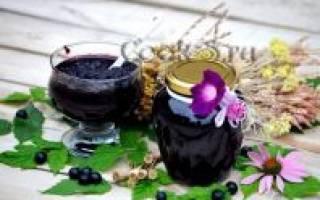 Подборка лучших рецептов заготовки рябины аронии черноплодной на зиму