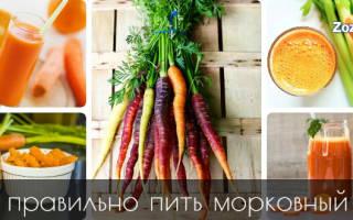 Чем полезен сок моркови для организма человека