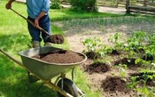 Можно ли удобрять огород фекалиями
