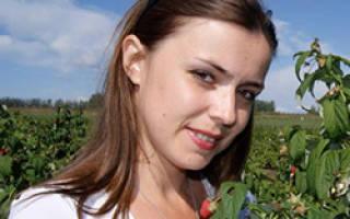 Сидераты под помидоры для повышения урожайности