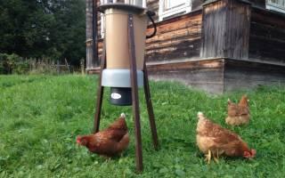 Несколько вариантов как сделать автоматическую кормушку для кур