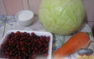 Как квасить капусту с клюквой рецепт на зиму