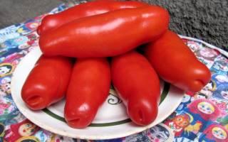 Лучшие сорта томатов описания достоинства недостатки