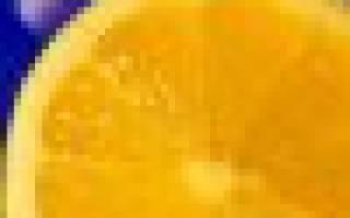 Гипсофила метельчатая выращивание и уход в домашних условиях