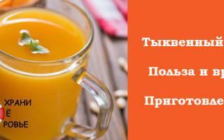 Чем полезен и как приготовить тыквенный сок в домашних условиях