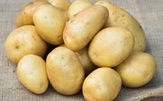 Картофель уладар описание сорта и особенности выращивания