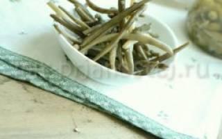 Рецепты заготовки спаржевой фасоли на зиму
