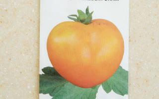 Высокоурожайный и полезный сорт помидоров розовый спам