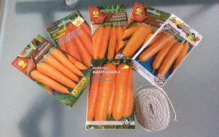 Весенняя посадка моркови лучшие советы