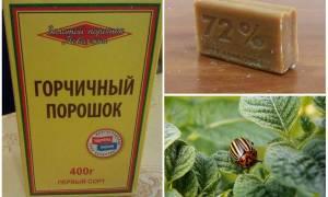 Горчица от колорадского жука на картофеле рецепты отзывы