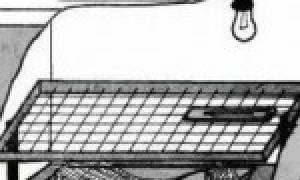 Как сделать самому автоматический инкубатор с автоматическим переворотом яиц