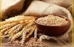 Озимая пшеница лучшие представители культуры