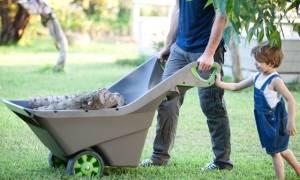 Выбираем тележку садово огородную или строительную на колесах