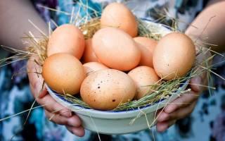 Как проверить свежесть яйца опустив его в воду