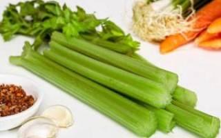 Как сохранить сельдерей на зиму заготовка витаминов в домашних условиях