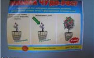 Препарат оберег оберегъ для растений как применять стимулятор роста