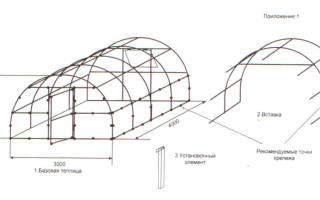 Процесс изготовления теплицы из поликарбоната своими руками