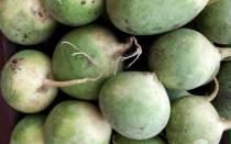 Чем полезна зеленая редька для организма