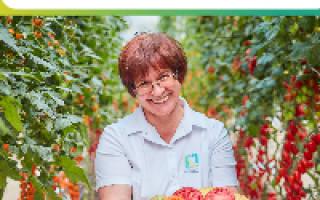 Агротехника выращивания гороха в открытом грунте
