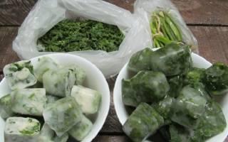 Как заготовить и сохранить зеленый лук на зиму