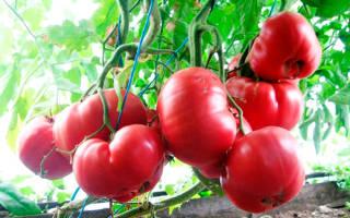 Лучшее на свой стол розовые томаты