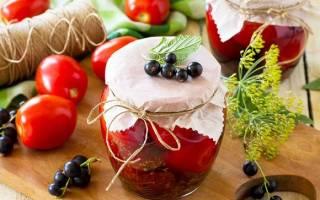 Рецепты приготовления вкусных соленых помидоров на зиму