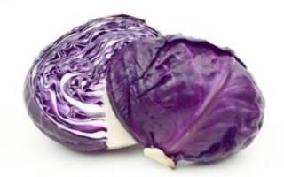 Как заготовить и сохранить краснокочанную капусту