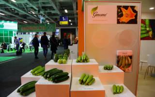 В киеве пройдет выставка фрукты овощи логистика 2017
