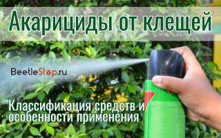 Лучшие акарициды и инсектоакарициды для растений